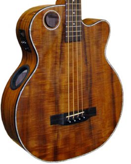 Acoustic-Electric Bass Guitar