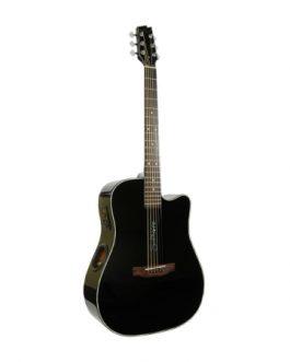 Boulder Creek Guitar, ECR1-B Solitaire, Black