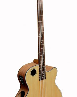 Boulder Creek Guitar, EBR3-N5 Acoustic-Electric 5-string Bass Guitar