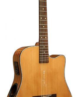 Boulder Creek Guitar, ECR3-N Solitaire