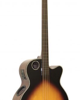 Boulder Creek Guitar, Acoustic Bass Spruce Top Tobacco Burst Fretless EbonyEBR1-TB4FE