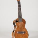 Riptide Ukulele, Concert Acoustic-Electric EUC-5NG