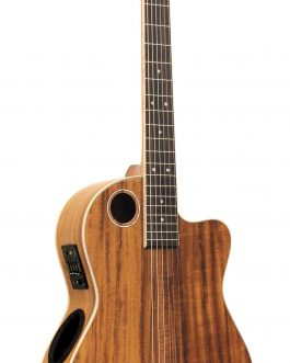 Boulder Creek Guitar, ECL-6 Classical, Koa