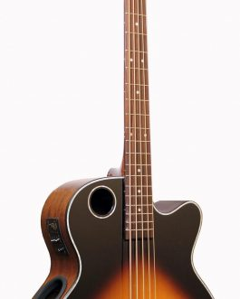 Boulder Creek Guitar, Acoustic Bass Spruce Top Tobacco Burst EBR1-TB5