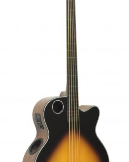 Boulder Creek Guitar, EBR1-TB5FE Acoustic/Electric Bass, 5-string Fretless Ebony