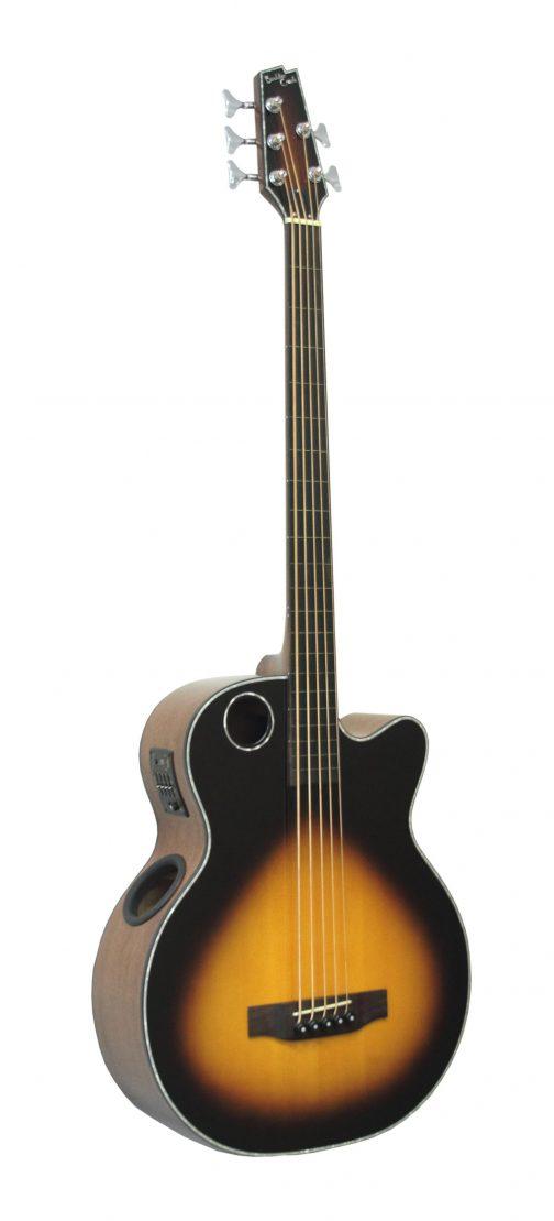 Boulder Creek Guitar, Acoustic Bass Spruce Top Tobacco Burst 5-string Fretless Ebony EBR1-TB5FE