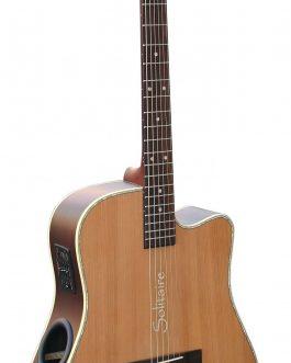 Boulder Creek Guitar, ECR4-NS Solitaire, Rosewood