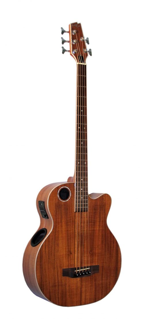 Boulder Creek Guitar, Acoustic Bass Koa 5-string EBR6-N5